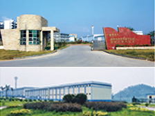 The dragon of guangxi industrial co., LTD